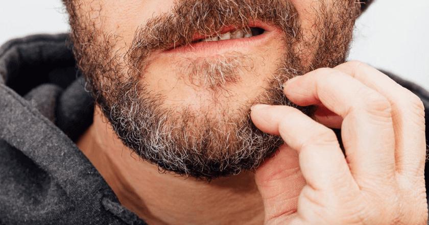 Forfora nella barba