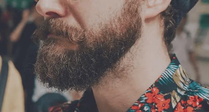 Barba Hipster quanto bisogna aspettare per ottenerla